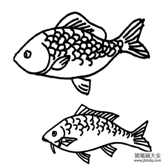 鱼简笔画图片大全 鱼简笔画 简笔画图文教程 百人简笔画 儿童简笔画图片