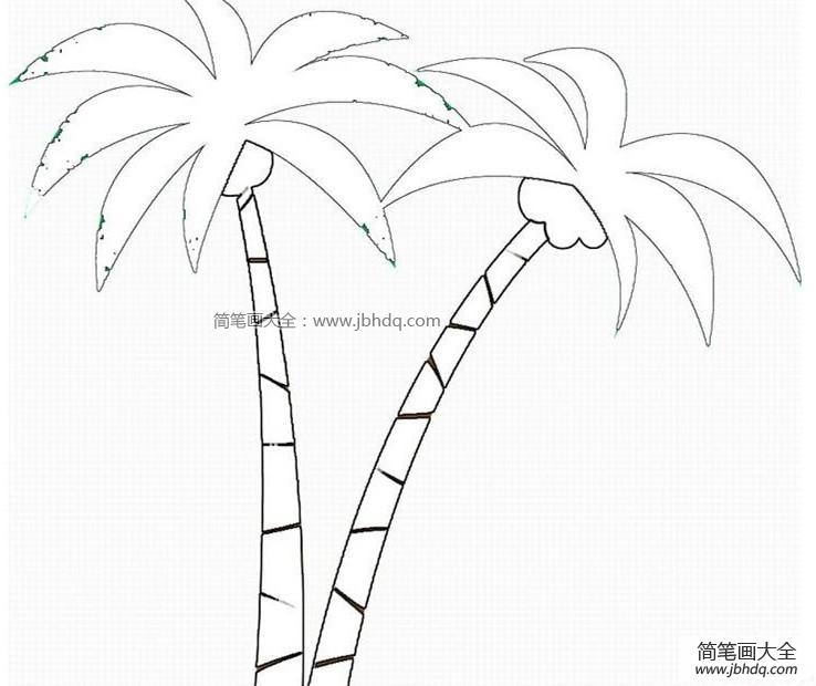椰子树怎么画 两颗椰子树 椰子树简笔画 百人简笔画 儿童简笔画图片