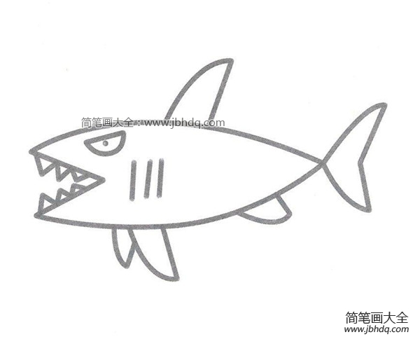 [鲨鱼简笔画图片大全]鲨鱼简笔画图片