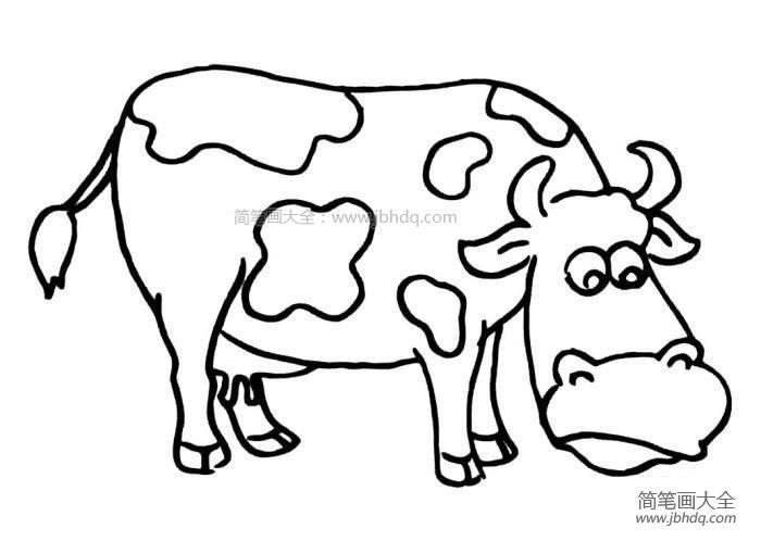 【吃草的奶牛简笔画图片大全】吃草的奶牛简笔画
