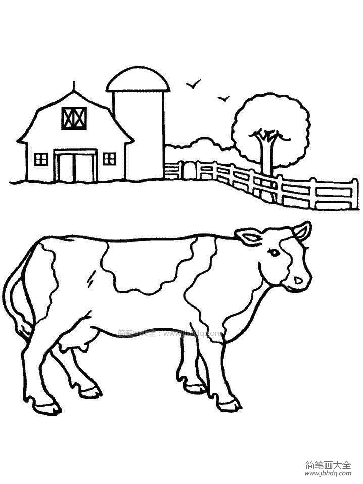 农场里的奶牛简笔画图片大全 农场里的奶牛简笔画图片 儿童水粉画 百人