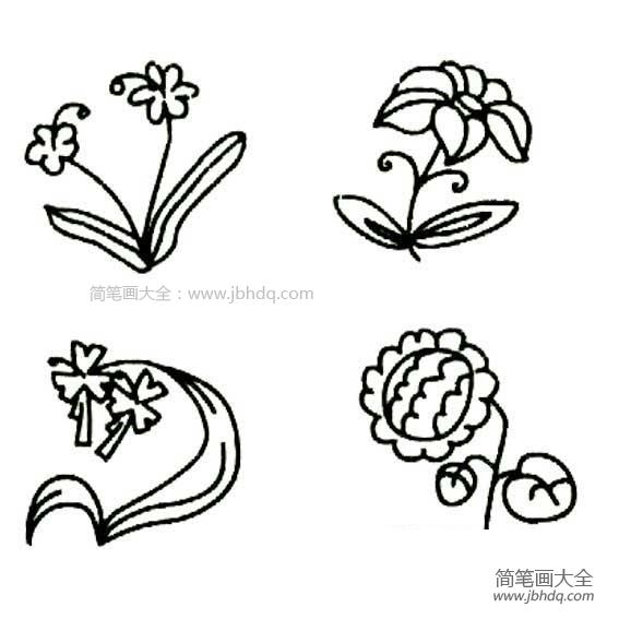 花朵的简笔画图片大全|花朵的简笔画图片
