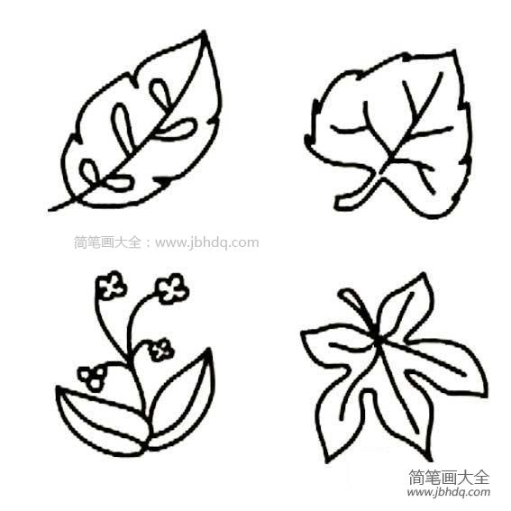 【几张树叶的简笔画图片大全】几张树叶的简笔画图片