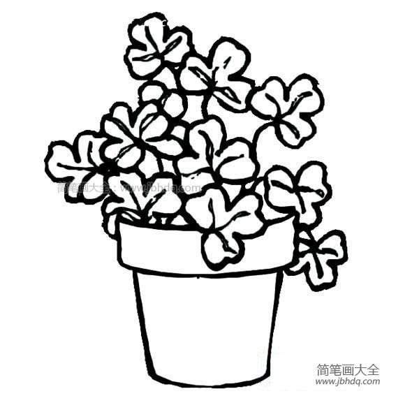 小花仙简笔画_盆里的小花简笔画