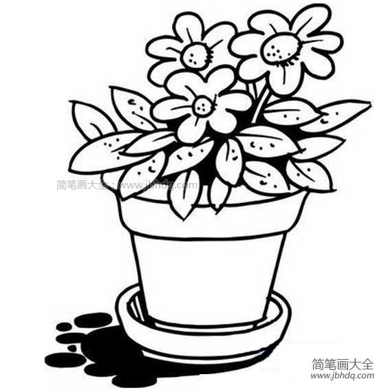 【花盆和花的简笔画图片】花盆里的花简笔画