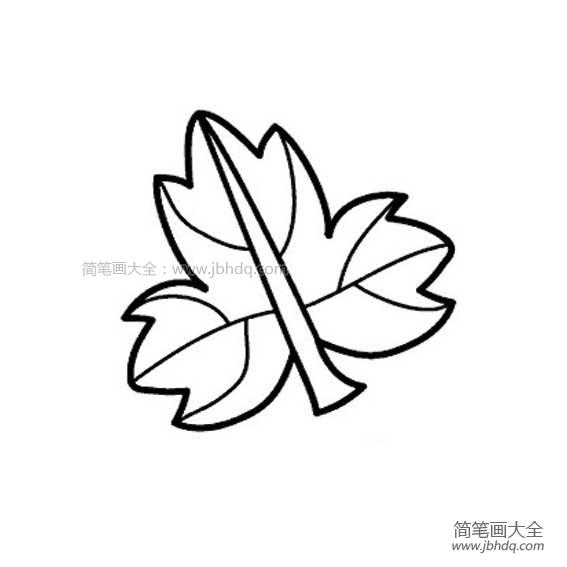 【我是一片树叶】一片树叶简笔画图片