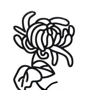 【重阳节图片简笔画图片】重阳节菊花简笔画