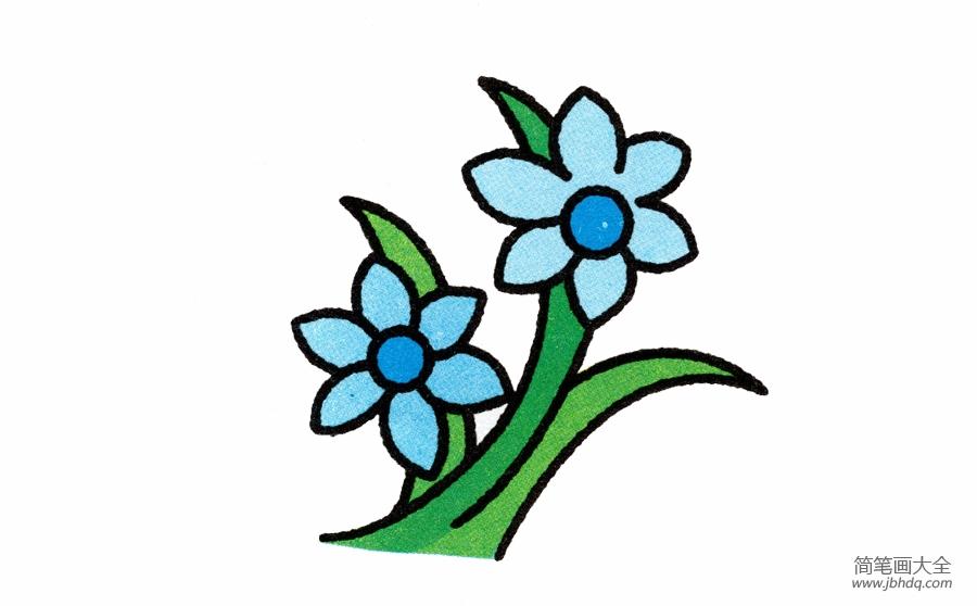 [兰花画法简笔画图片]兰花的简笔画画法