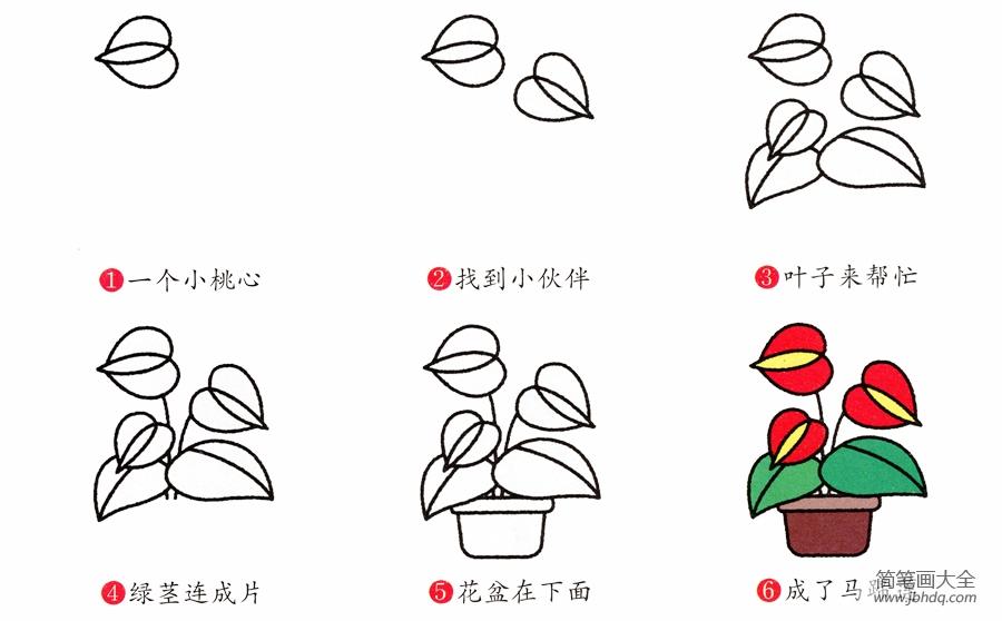 [踏春归来马蹄香简笔画]马蹄兰简笔画画法