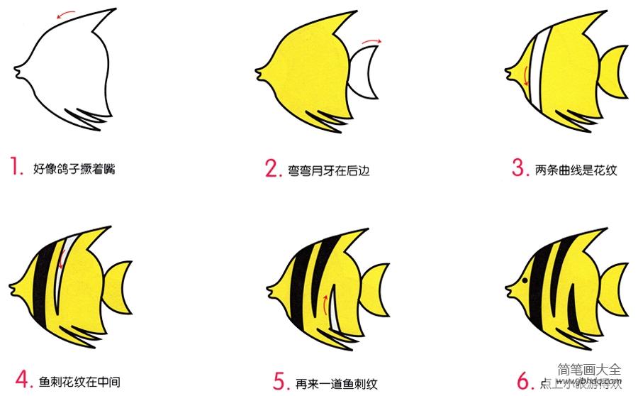 热带鱼图片简笔画_热带鱼的简笔画画法