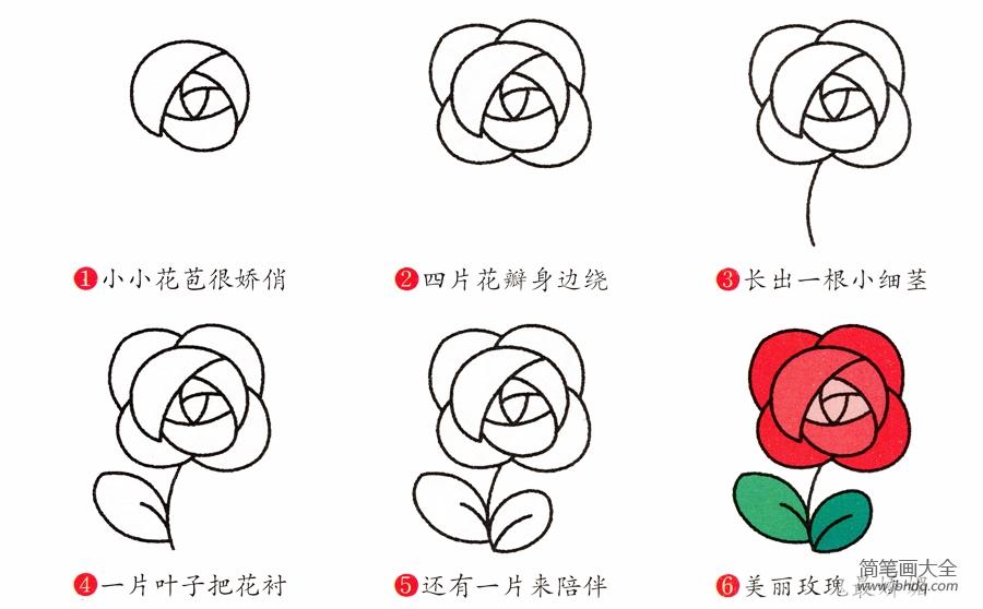 [玫瑰花简笔画画法步骤]玫瑰花简笔画画法