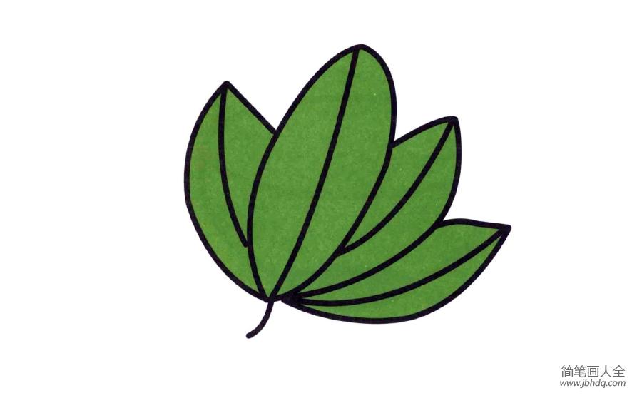 【漂亮的树叶简笔画图片】漂亮的树叶简笔画