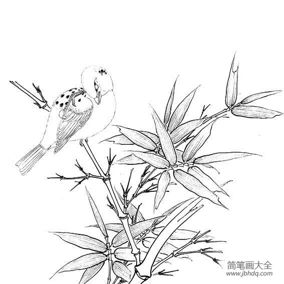 [小鸟和花朵简笔画图片大全]小鸟和花朵简笔画