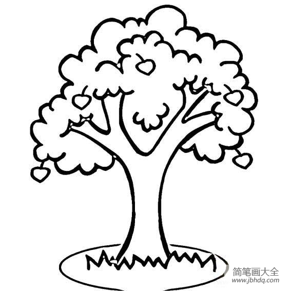 [植物简笔画大全]儿童植物简笔画果树