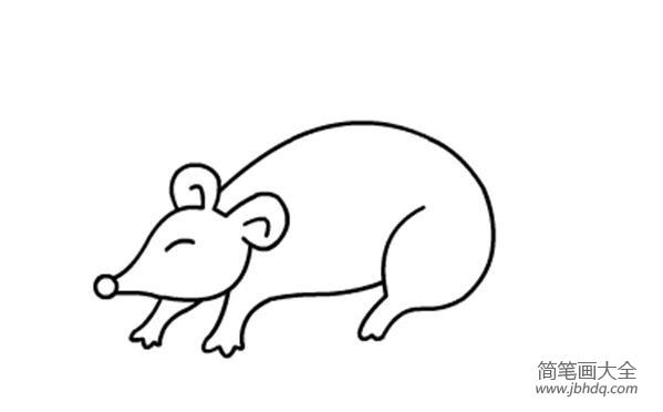 动物简笔画大全带颜色 儿童动物简笔画老鼠