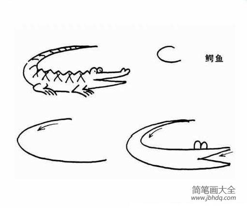 儿童简笔画教程鳄鱼
