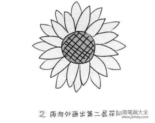 【向日葵图片简笔画颜色】儿童花朵简笔画向日葵