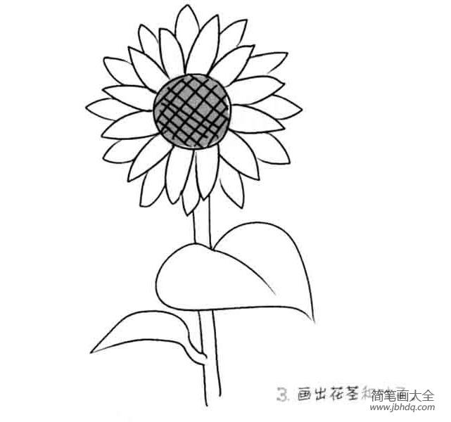 儿童花朵简笔画向日葵