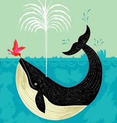 鲸鲨 鲸 儿童铅笔画 百人简笔画 儿童简笔画图片