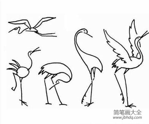 幼儿简笔画图片仙鹤