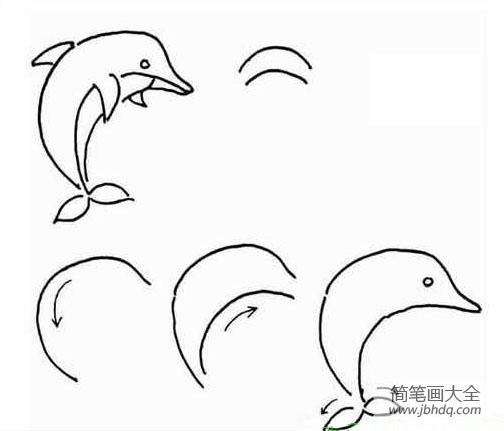 儿童简笔画教程 海豚