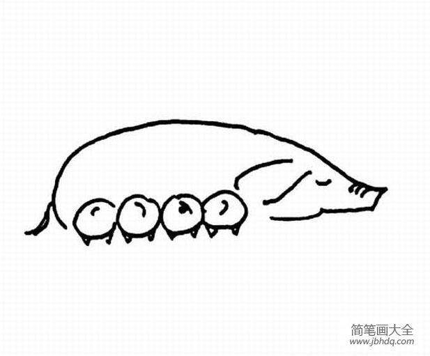 [属相猪和马相配吗]猪妈妈和小猪简笔画