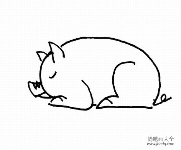 卡通猪简笔画步骤_卡通猪的简笔画图片