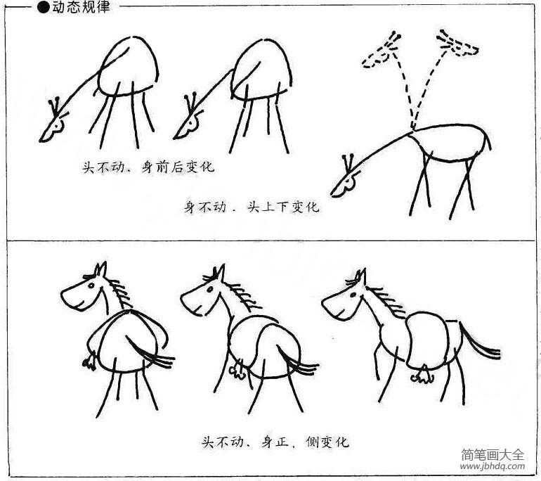 动物的画法