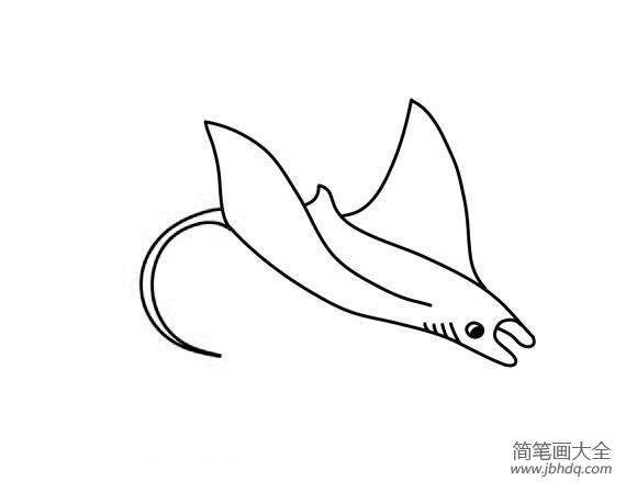 魔鬼鱼怎么画简笔画_如何画魔鬼鱼,魔鬼鱼简笔画步骤