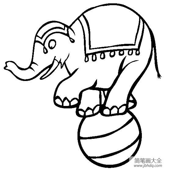 马戏团表演 大象表演简笔画图片
