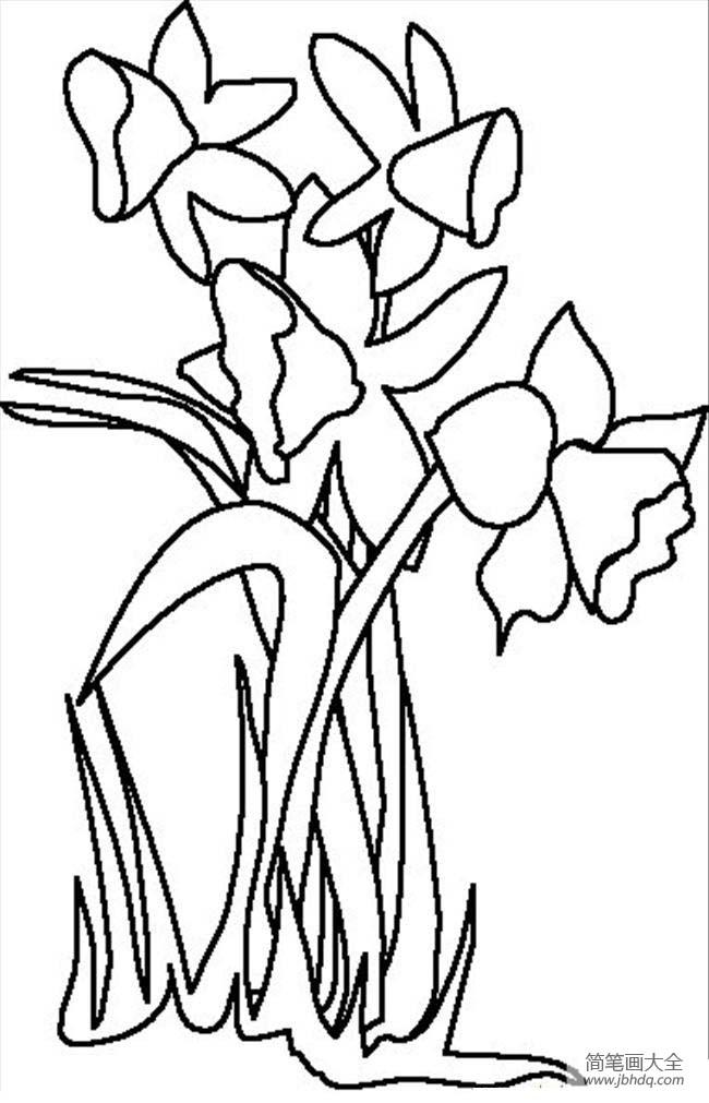花朵图片 简单的花朵简笔画画法