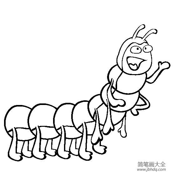 昆虫图片 卡通毛毛虫简笔画图片