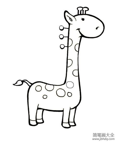 [关于长颈鹿的简笔画图片大全]关于长颈鹿的简笔画图片