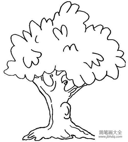 各种各样的树简笔画图片大全 各种各样的树简笔画图片 海底世界
