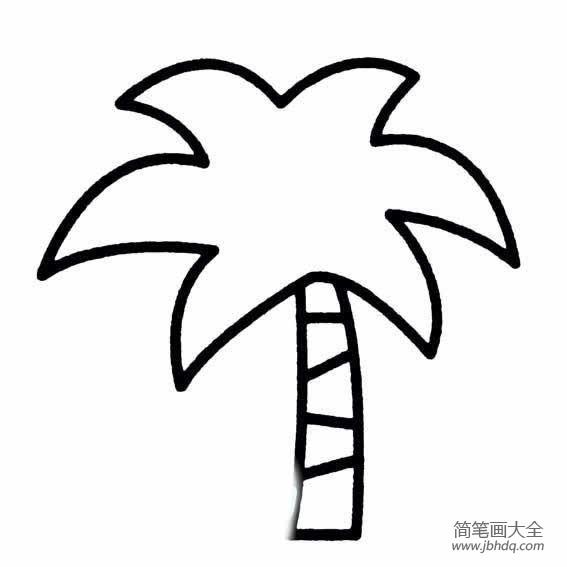 关于椰子树的简笔画图片大全 关于椰子树的简笔画图片 椰子树简笔画