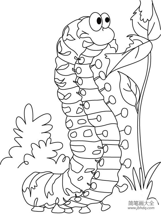 毛毛虫简笔画颜色|恶心的毛毛虫简笔画