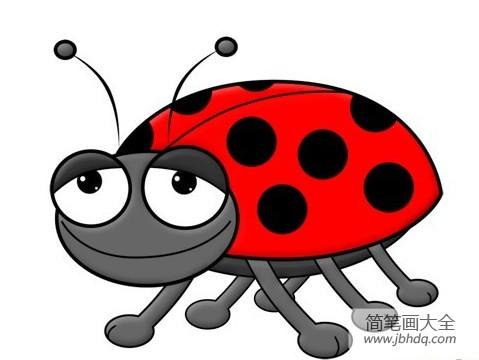 可爱的七星瓢虫作文|可爱七星瓢虫