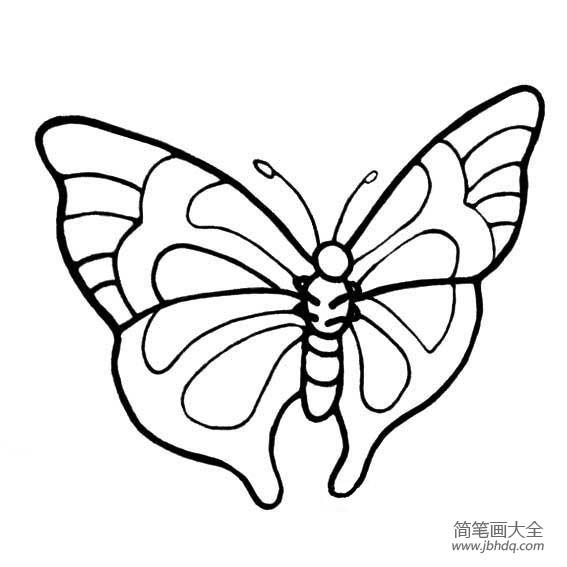 简笔蝴蝶画 简笔立体蝴蝶图片