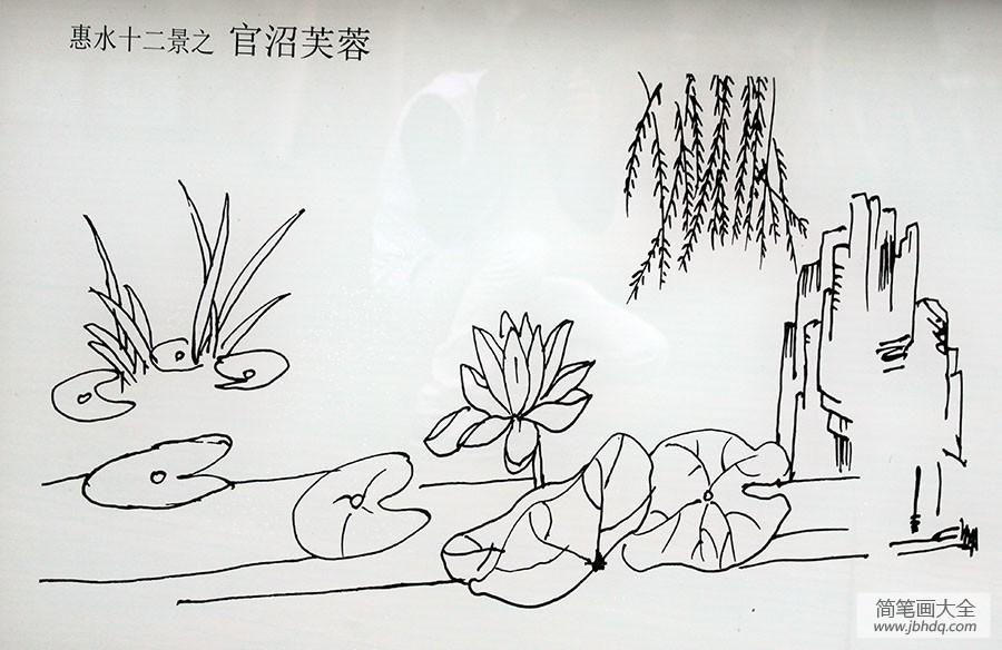 【荷塘柳树简笔画图片大全】荷塘柳树简笔画