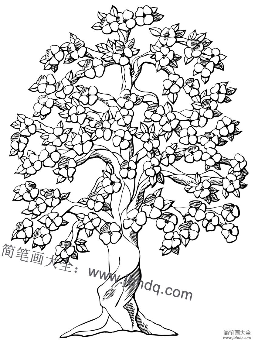 幼儿简笔画图片花千骨_【苹果树什么时候开花】开花的苹果树怎么画 - 儿童水粉画 - 百 ...