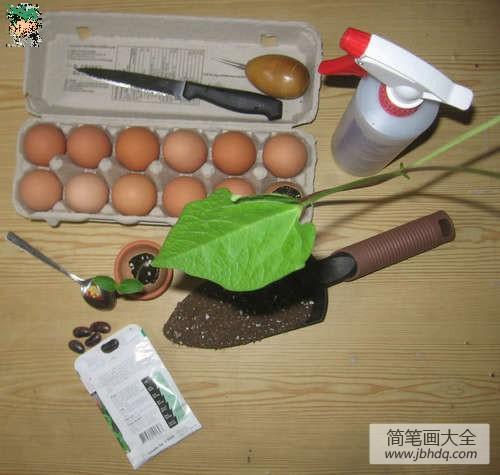 鸡蛋壳鸭蛋壳游戏_鸡蛋壳手工:蛋壳盆栽