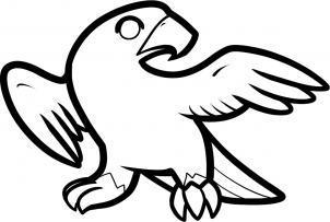 猎鹰画画教程
