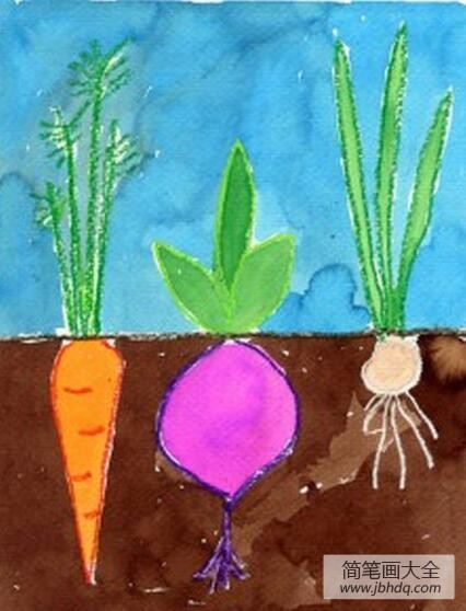 【甜菜是萝卜吗】萝卜和甜菜国外创意蔬菜画图片分享