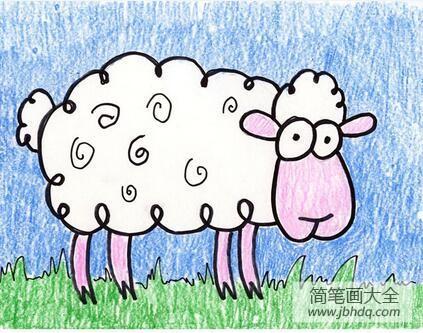 可爱的小绵羊动物彩铅画作品欣赏