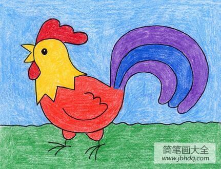 漂亮的大公鸡动物彩铅画教师范画