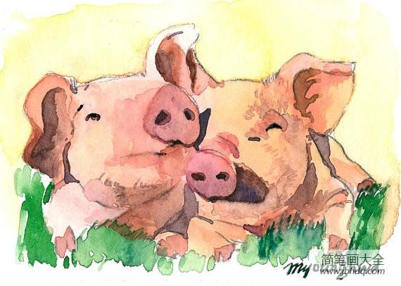 【农场里的小猪水彩动物写生画图片大全】农场里的小猪水彩动物写生画图片大全