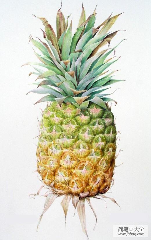 一个大菠萝超写实水果画作品赏析