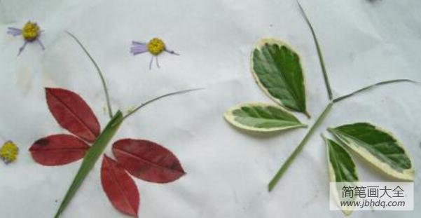 [树叶贴画作品一等奖]树叶贴画作品:去公园捡树叶