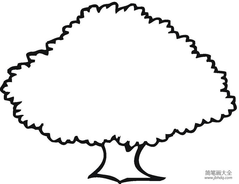 幼儿园教师个人总结_幼儿园教小朋友画大树