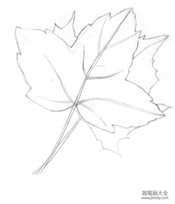 枫叶水彩画法|水彩枫叶绘画技法